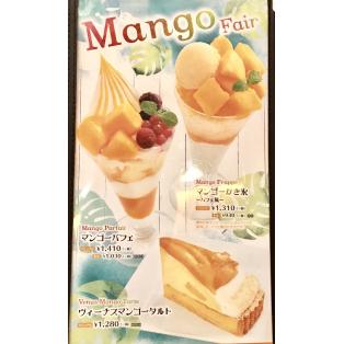 マンゴー!!