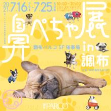 【7/16(金)~7/25(日)】5F 催事場「鼻ぺちゃ展in調布」開催!
