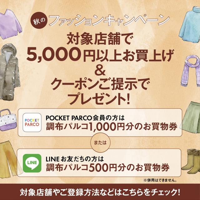 秋のファッションキャンペーン!