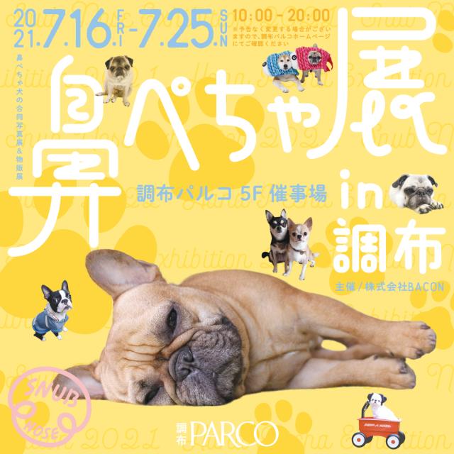 「鼻ぺちゃ展」開催!