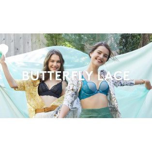 Butterfly lace/KISS Brar