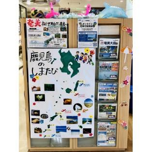 ㊗奄美大島 世界自然遺産登録㊗