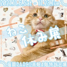 【EVENT】本館4階「ねこ休み展 in 福岡」