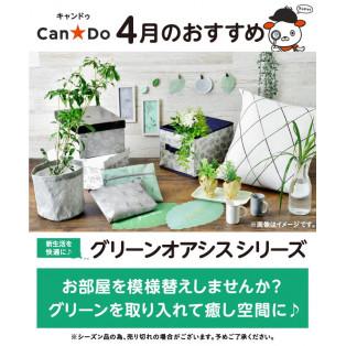 Can★Do 4月のおすすめ