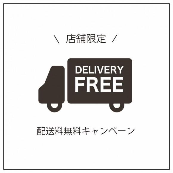 イベント中の送料無料キャンペーン!!!