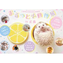 まるっと小動物展in広島 開催!