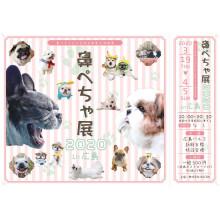 """【新館6F 特設会場】""""ぶひ可愛い""""作品が大集合!「鼻ぺちゃ展 2020」開催!"""