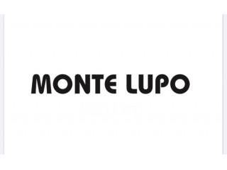 モンテルポ