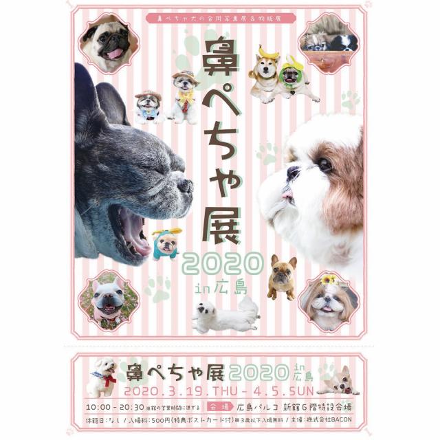 鼻ぺちゃ(3/19-4/5)