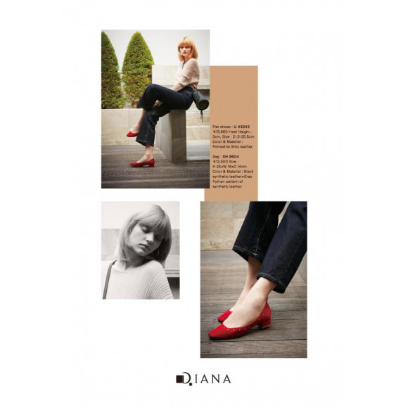 DIANA 2019 Autumn Collection