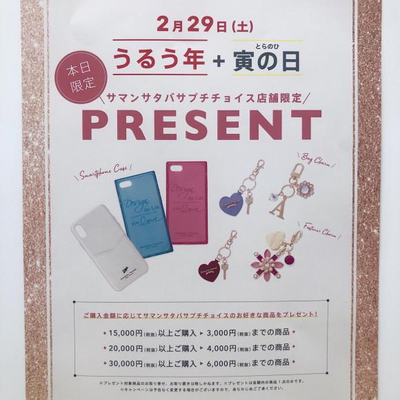 2月29日(土)!うるう年+寅の日 スペシャルフェア✳︎