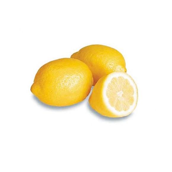 精油紹介 レモン
