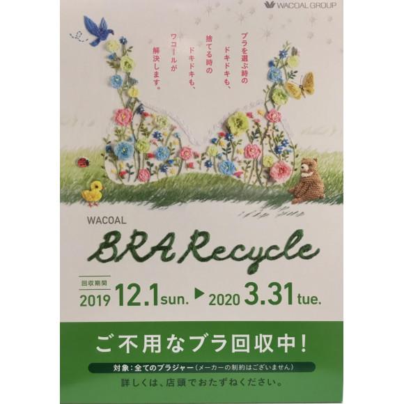 ブラリサイクルキャンペーン始まりました( ´ ▽ ` )