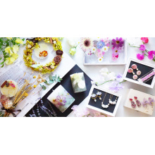 【5.24~】BOTANICAL COLLECTION