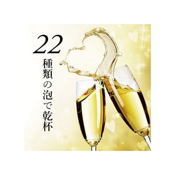 【泡フェス2021】90分飲み放題!!22種類の泡で乾杯