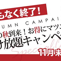 ★11/20★ 夕方空きございます!!
