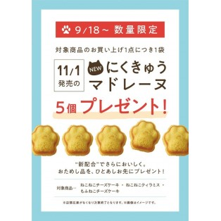 【ノベルティプレゼント】にくきゅうマドレーヌプレゼント企画!