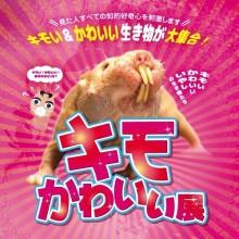 【期間限定@5F】キモかわいい展 期間限定開催!