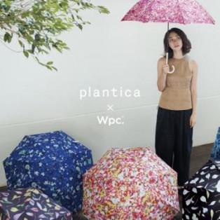 ♪生花のような傘、Plantica♪