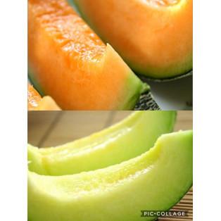 緑のメロンと赤のメロン。味の違いをお伝えするのはとても難しい。