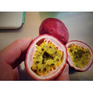 ガチンコのパッションフルーツはこういうものなのだよ