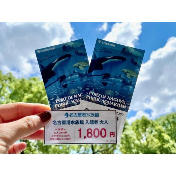 【レジャー】名古屋港水族館