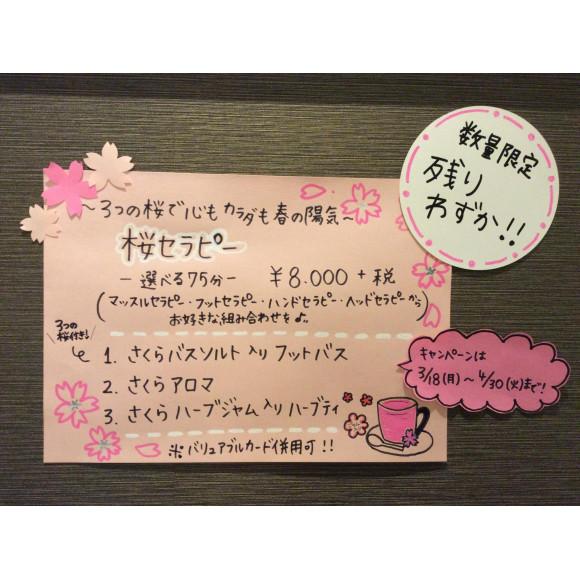 桜セラピー 残りわずかです!!