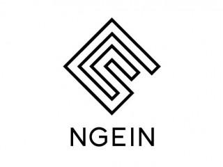 NGEIN