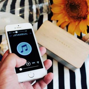 Mobile Speaker