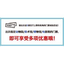 チケ得(中国簡体)