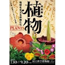 【イベント】特別展「植物」オリジナルステッカープレゼント!