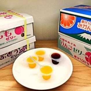 【北海道】 夏はヤッパリ?ゼリーでしょ!! 詰め合わせ(4種類)お得セット