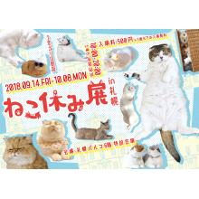 EVENT ★ 6F・特設会場『ねこ休み展 in 札幌』開催!!