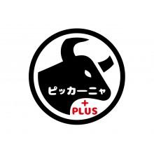 NEWS ★ 8Fレストラン『ピッカーニャ+PLUS』NEW OPEN‼