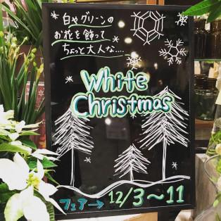 ホワイトクリスマスフェア☆彡