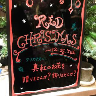 レッドクリスマスフェアー★