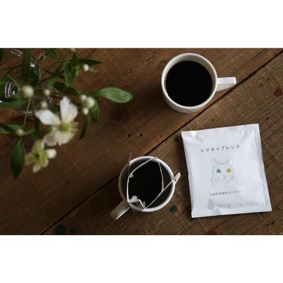 ●⚪︎●自家焙煎珈琲豆シロネコ コーヒーの販売●⚪︎●