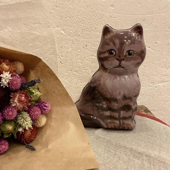 猫まっしぐらฅฅ  ~第一弾~