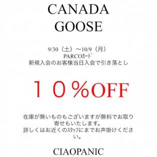 【カナダグース10%OFF】