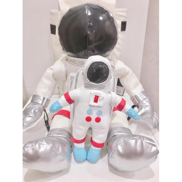 宇宙飛行士シリーズ
