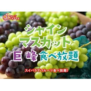 シャインマスカット・巨峰食べ放題本日から!