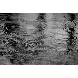 ◯ 梅雨対策にストレート ◯