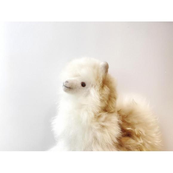 【再入荷】アルパカ毛のぬいぐるみ / INSPIRED PERU