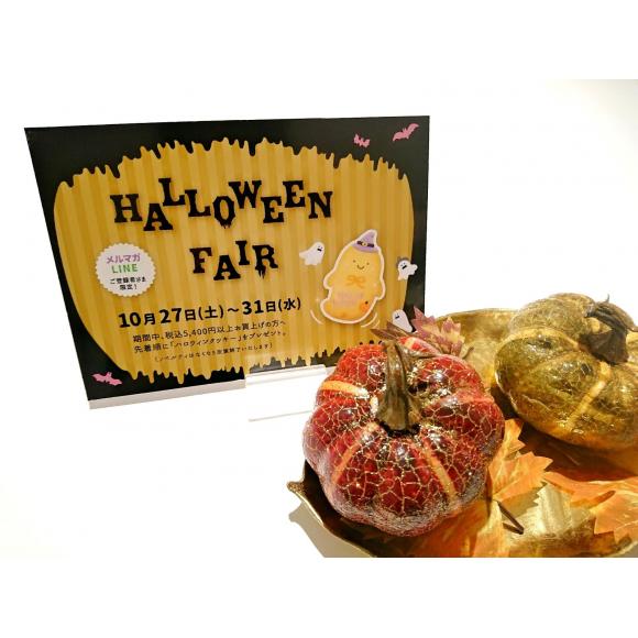LINE&メルマガ登録者限定☆10月27日〜31日までハロウィンフェア