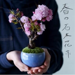 恒例・ミニ盆栽販売会『春の石木花市』
