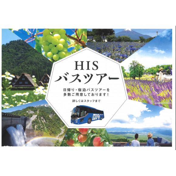 HISおすすめバスツアー②【日本三大イルミネーション!あしかがフラワーパーク】