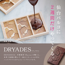 【LIMITED SHOP】本館/1F DRYADES POPUP STORE