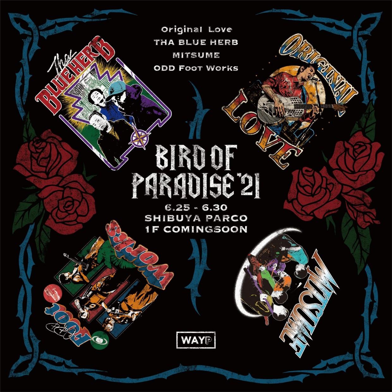 BIRD OF PARADISE' 21 by WAYP MUSIC