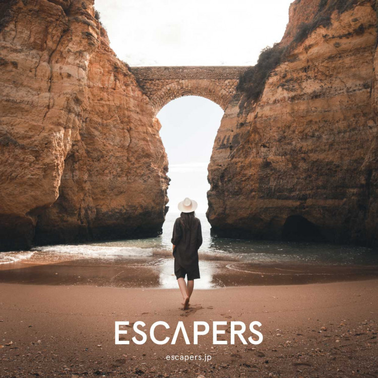 ESCAPERS(The window)