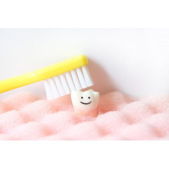 どうして歯磨きをしなければならないの?